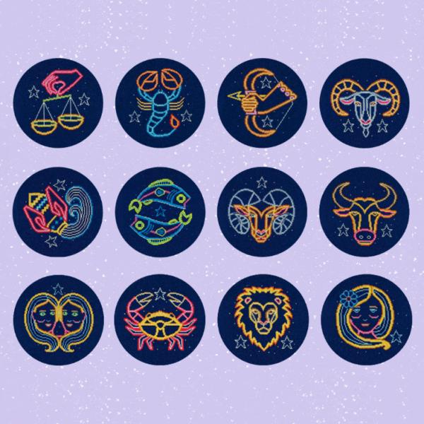 DMC Counted Cross Stitch Kit Bundle (Star Signs)