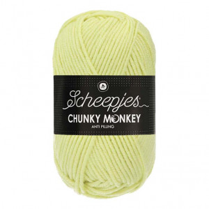 Scheepjes Chunky Monkey Anti Pilling Yarn - Mint (1020)