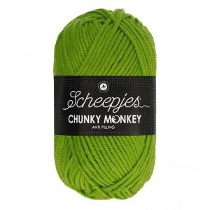 Scheepjes Chunky Monkey Anti Pilling Yarn - Fern (2016)