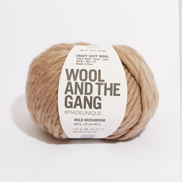 Wool and the Gang Crazy Sexy Wool Yarn - Wild Mushroom
