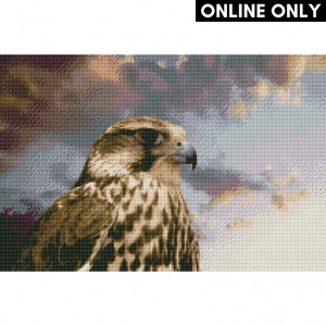Handmayk Premium Diamond Art Kit - Eye of the Falcon by Fernando Cortes