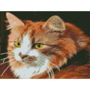Handmayk Premium Diamond Art Kit - Cat
