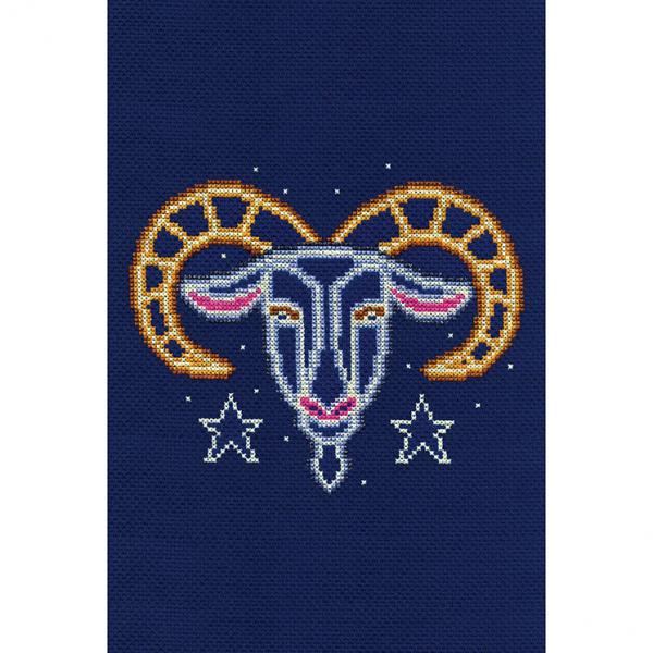 DMC Counted Cross Stitch Kit - Capricorn